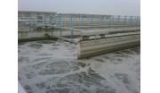 市政污水——台州市水处理发展有限公司